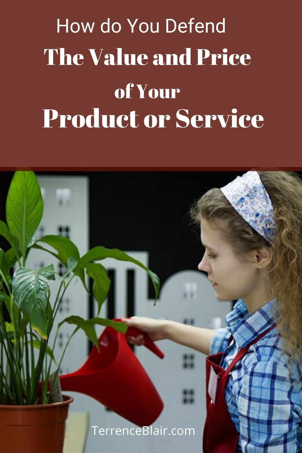 Defend Value and Price of your product and service